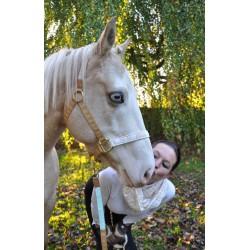 Pferdehalfter Design Goldpferde mit Messingbeschlägen beige gold