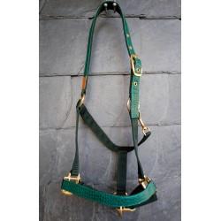 Pferdehalfter Leder grün, dunkelgrün