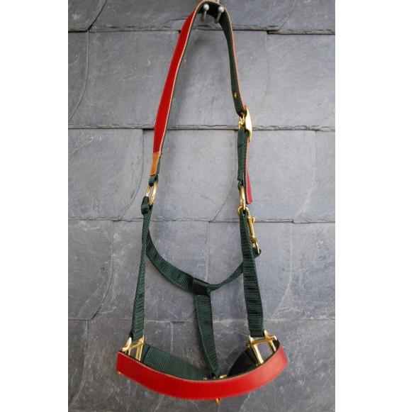 pferde-halfter Dunkelgrün, Rot