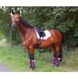 Bandagen pferd lila mit Swarovski Strass