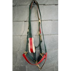 Schönes Halfter & Strick 'Pferdemarsch' im Set Rot Grün Leder
